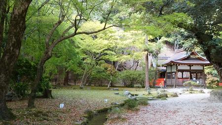 上賀茂神社お庭.jpeg