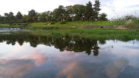 鴨川 水面に夕焼雲.jpeg
